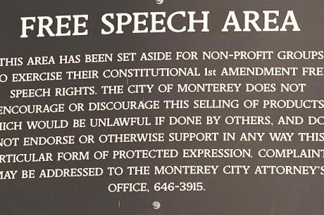 Over de begrenzingen van de vrije meningsuiting