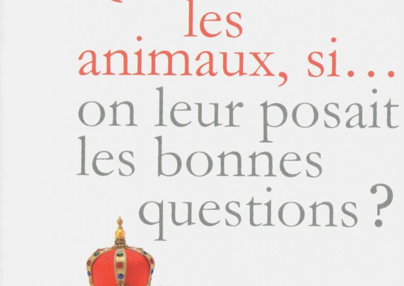 Que diraient les animaux si…? + video/installation