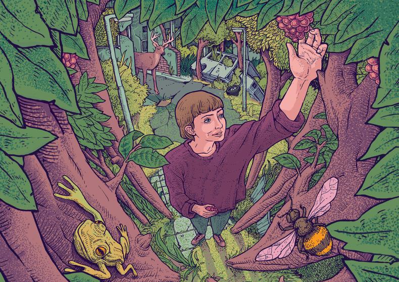 AFGELAST: FOREST [17+]